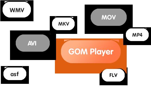 GOM Player Logo